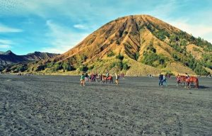 Surabaya Mount Bromo Package