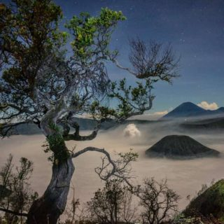 Mount Bromo Package Stargazing
